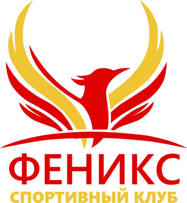 Заказ на создание CRM - системы от центра гимнастики Феникс